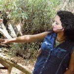 איילת בר-און - מופע השקת אלבום בכורה
